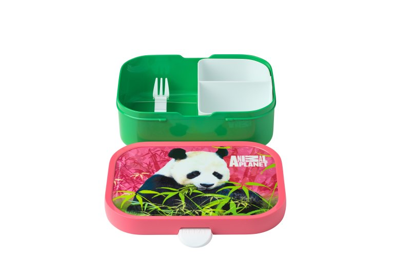 lunch-set-campus-pulb-animal-planet-panda