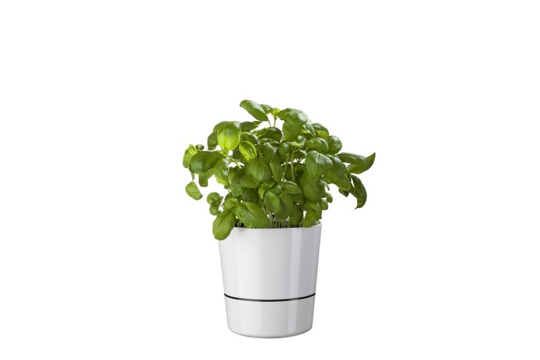 herb-pot-large-130-mm-nordic-green