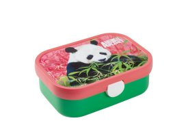 lunch box campus - animal planet panda