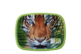 Lunchbox Campus midi - Animal Planet Tijger 2016